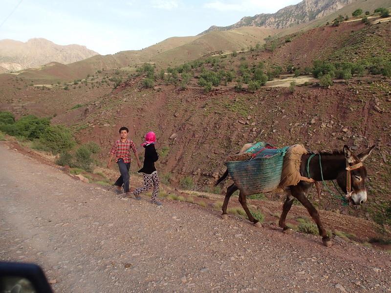 Haut Atlas de Marrakech a Figuig - Juin 2017 P6070129
