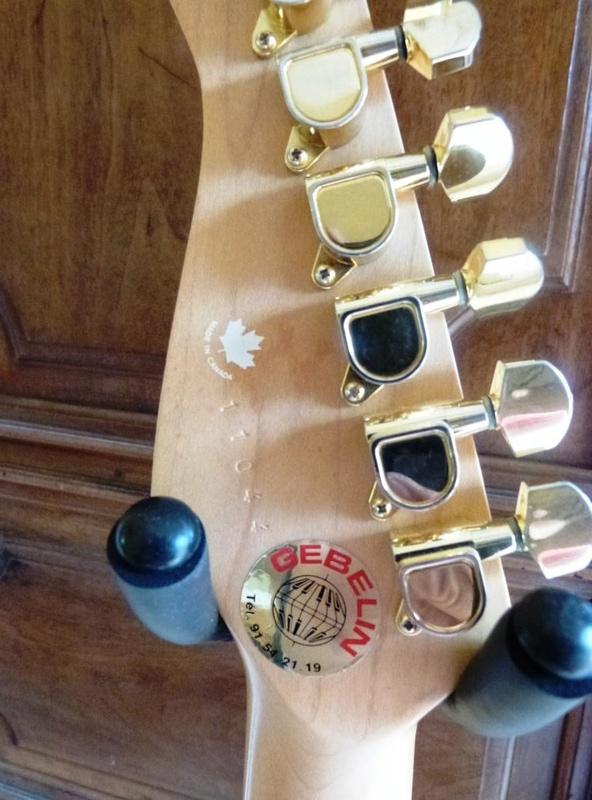 GODIN acousticaster L.R Baggs  VENDUE, (retirez l'annonce si vous le désirez) P1100622