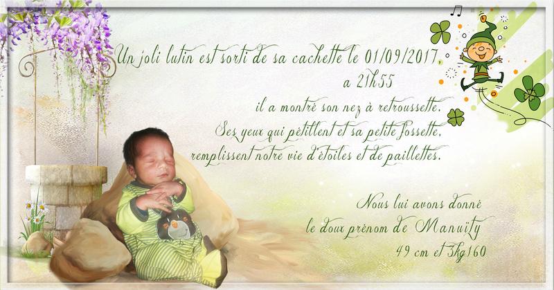 faire part de naissance  Lutin10