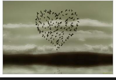 la nature a du coeur (jeu) - Page 5 Captur83