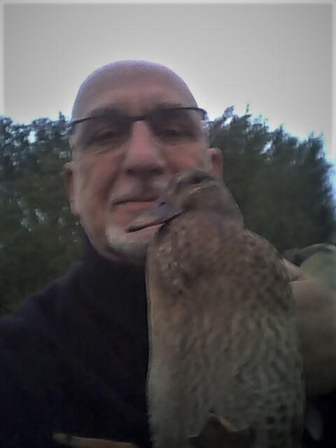 Cane colvert complice des rats Img_2011