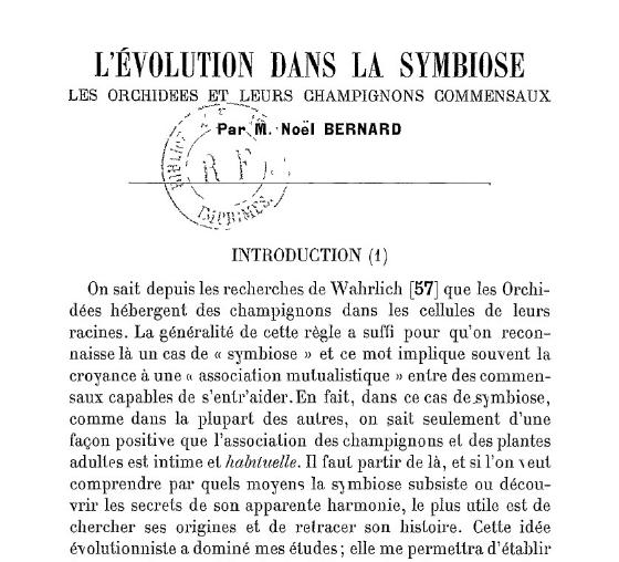 NOEL BERNARD LES ORCHID2ES ET LEURS COMMENCAUX  1909  Captur10
