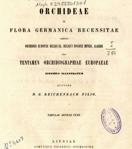 REICHENBACH ORCHIDEES 1850  Captur11