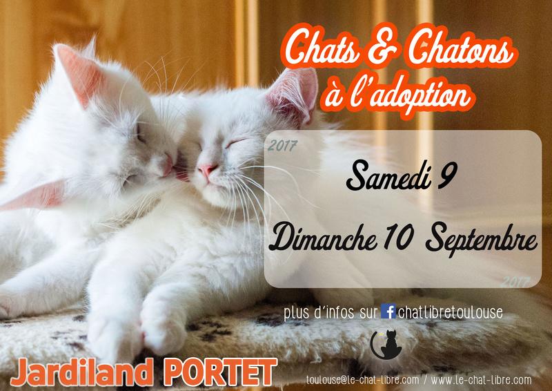 [ Adoptions ] Samedi 9 & Dimanche 10 septembre 2017 :  Jardiland Portet Jardil14