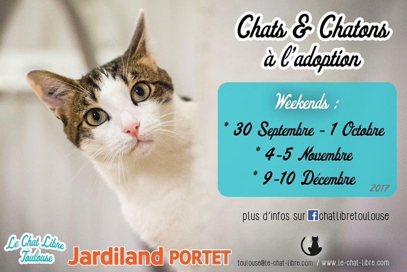 [ Adoptions ] Samedi 30 septembre & dimanche 1er octobre 2017 :  Jardiland Portet Recap-15