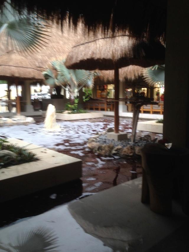 C'est très beau Cancun Riviera Maya Img_1228