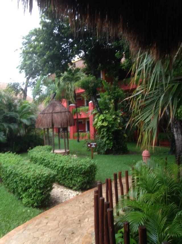 C'est très beau Cancun Riviera Maya Img_1231