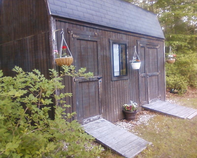 Roddie's new shed thread Photo-13