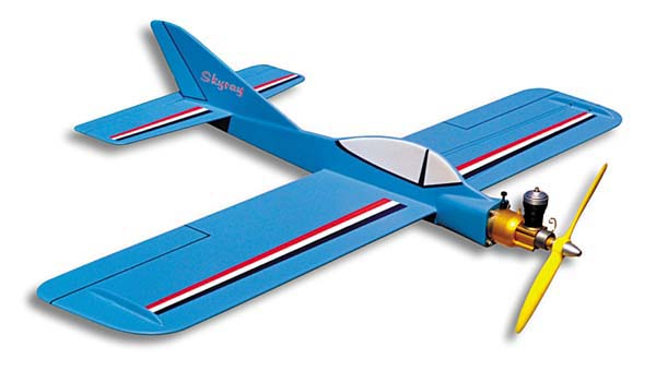 Ordered a 1/2A Skyray kit Yy1sig10