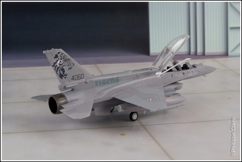 """""""What if"""" F-16 Familly _mg_0010"""
