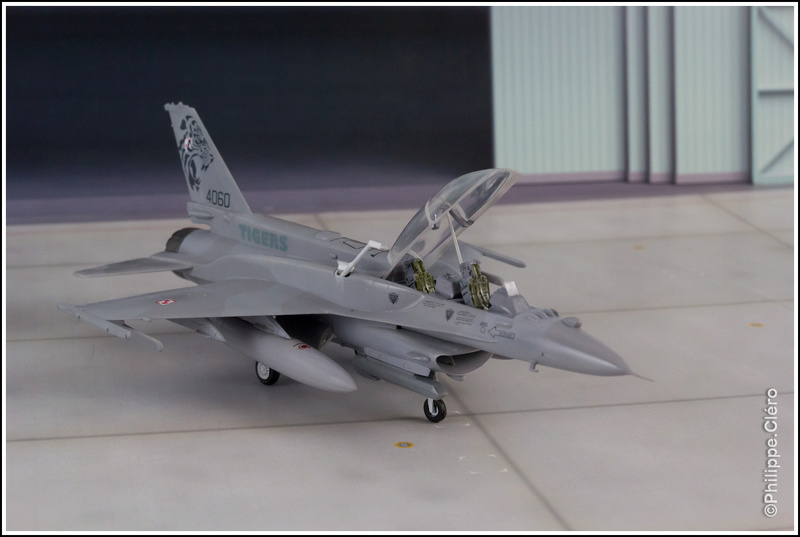 """""""What if"""" F-16 Familly _mg_0013"""