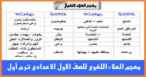 """معجم العلاء"""" كلمات اللغة العربية للصف الاول الاعدادى ترم أول 2018 0246"""