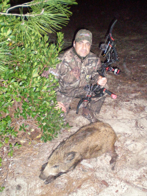Quelques photos de mes chasses  Pb201210