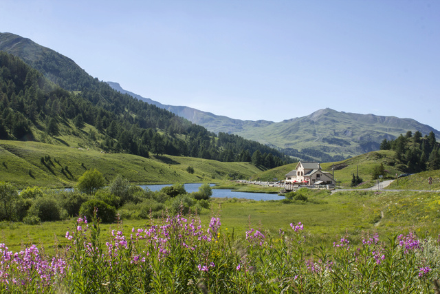 """Sur la route des """"Grandes Alpes"""" en Zoe Q210 - Page 2 Img_9113"""