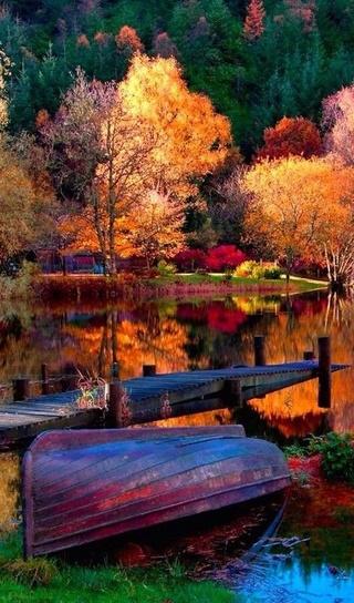 Photos d'automne - Page 2 25d31610