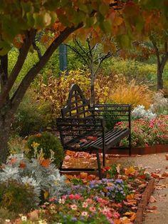 Photos d'automne - Page 2 A9e20910