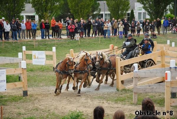 Concours Inter-régional d'attelage - Drôme - 2017 20170919