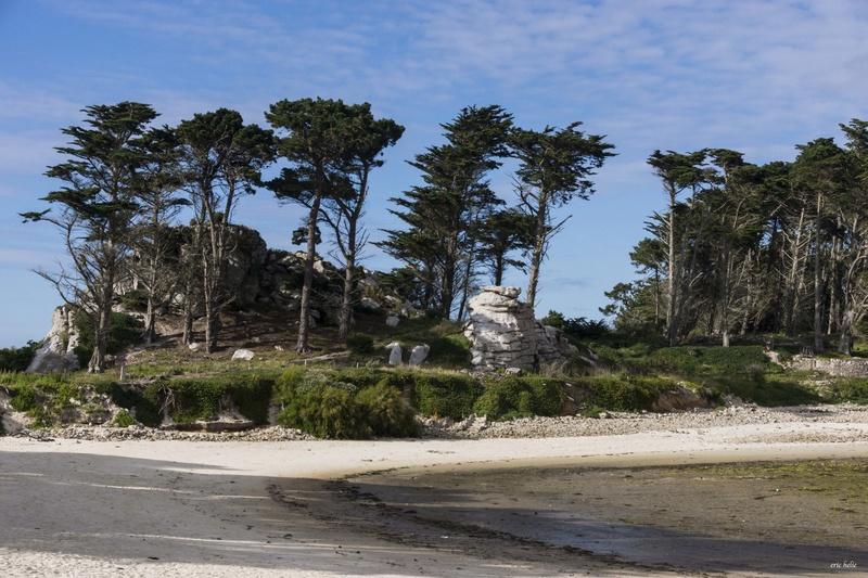 Pointe de Perharidy _dsc7412