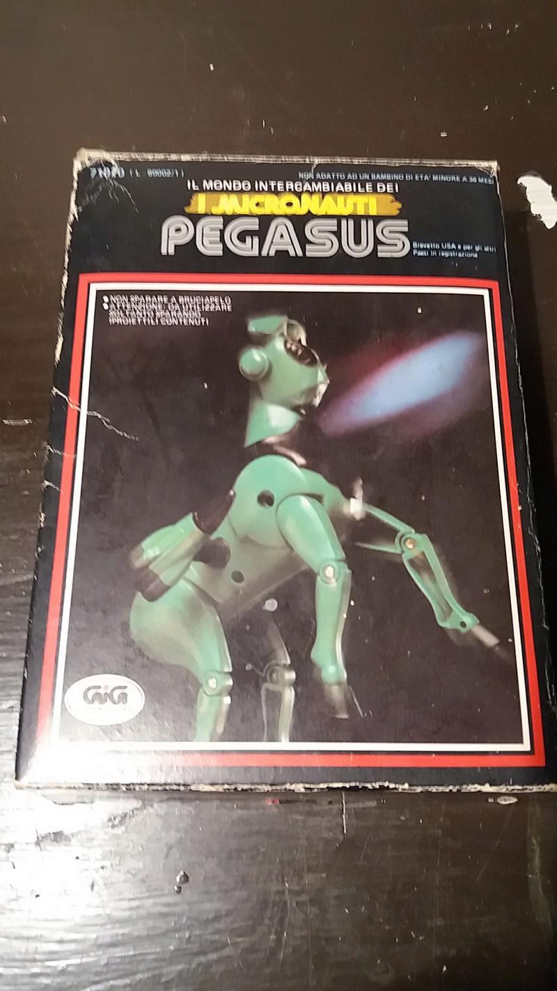 Pegasus Micronauti 20170730