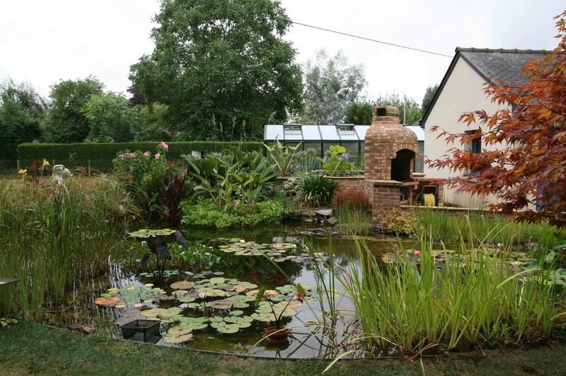 nagol - Jardin d'aquatiques Img_9211