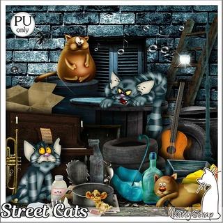 Streer cat de Kittyscrap Folder11