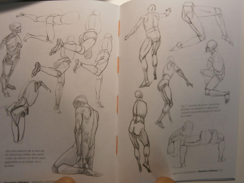 [bank] livres pour apprendre le dessin - Page 5 Pa040015