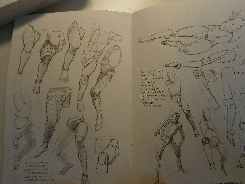 [bank] livres pour apprendre le dessin - Page 5 Pa040017