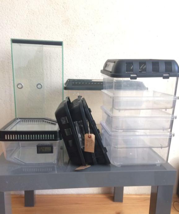 Lot Breeding box + Terrarium 20x20x40 Terra10