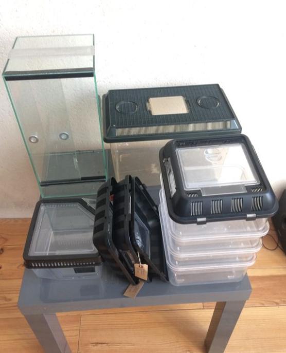 Lot Breeding box + Terrarium 20x20x40 Terra210