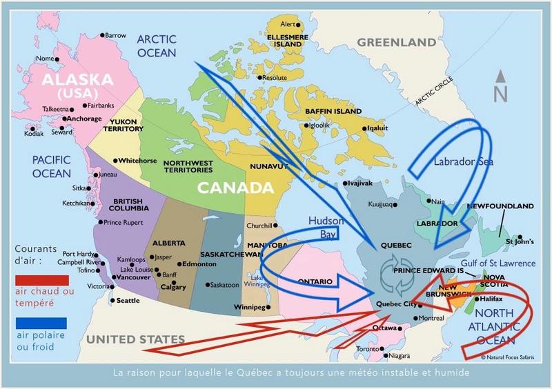 Mes poupées au Canada/USA : 25/06 - p.36   (nettoyage de voiture, balade et question, robe amérindienne, esquimau glacé) - Page 2 Couran10