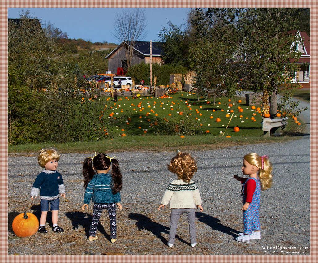Mes poupées au Canada/USA : 25/06 - p.36   (nettoyage de voiture, balade et question, robe amérindienne, esquimau glacé) - Page 4 Img_6811