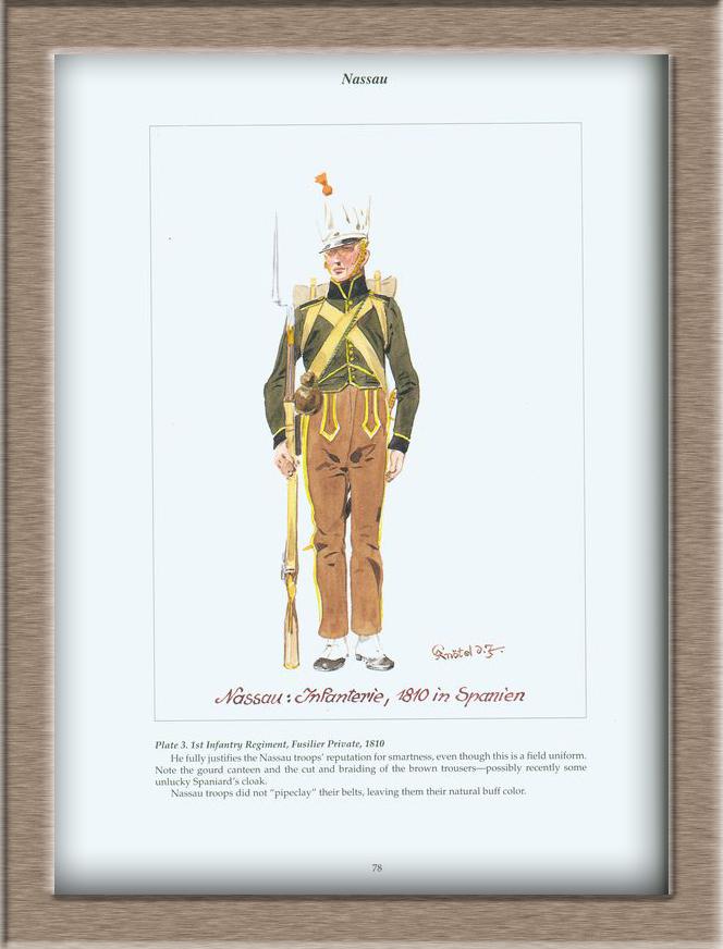 Fusilier de Nassau en Espagne 1810 MM54mm 9d21f211