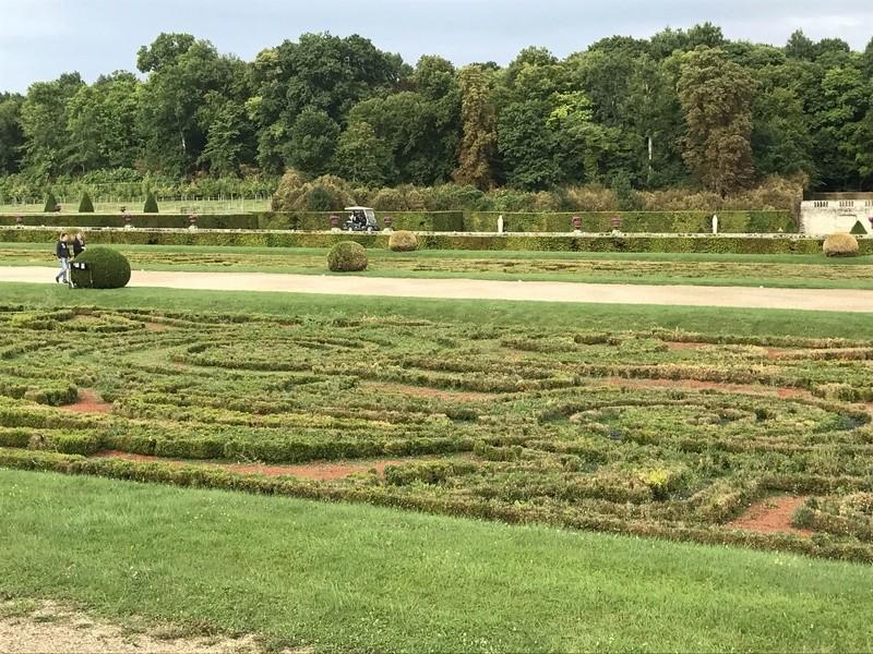 Les Buis des jardins du château de Versailles Img_2410