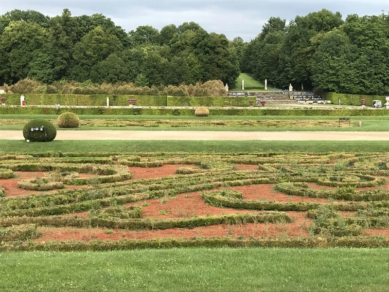 Les Buis des jardins du château de Versailles Img_2411