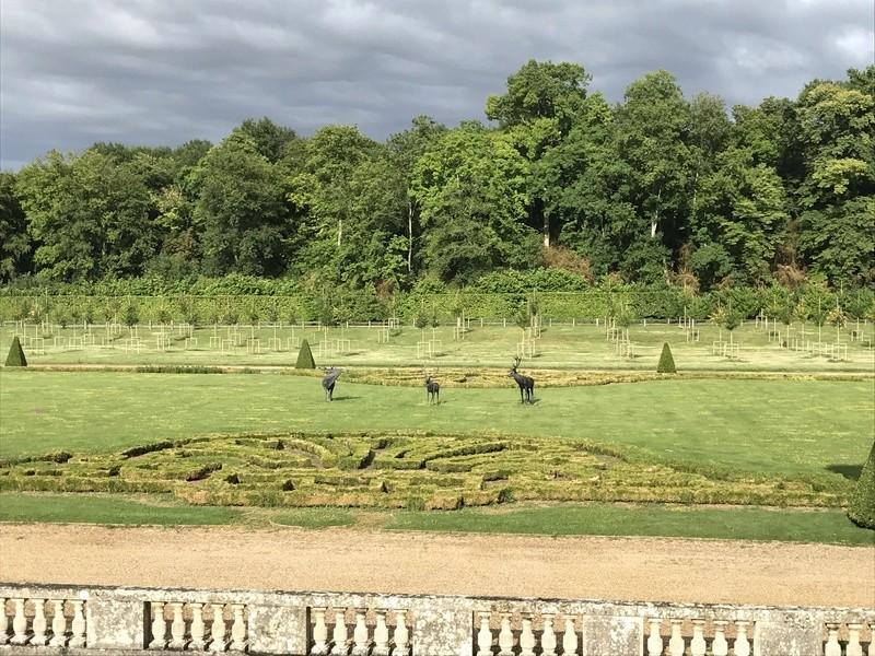 Les Buis des jardins du château de Versailles Img_2415