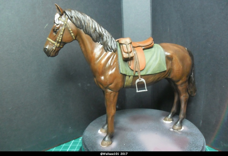 German Wehrmacht Cavalry 1/16 Dragon fini! - Page 4 Sam_1101