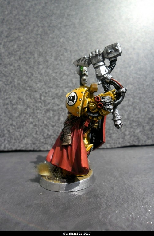 Capitaine Darnath Lysander Imperial Fists (Citadel Finecast 32mm) Sam_1236