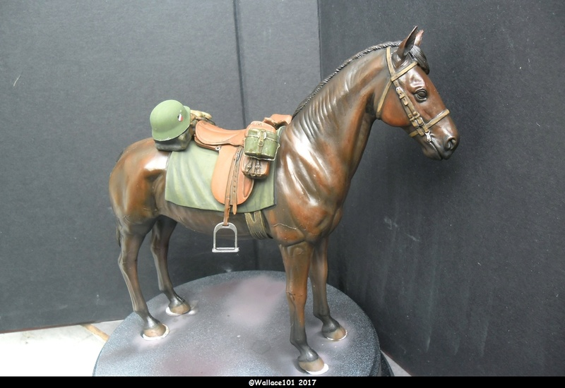 German Wehrmacht Cavalry 1/16 Dragon fini! - Page 6 Sam_1315