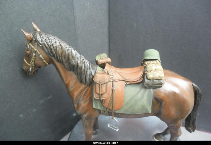 German Wehrmacht Cavalry 1/16 Dragon fini! - Page 6 Sam_1316