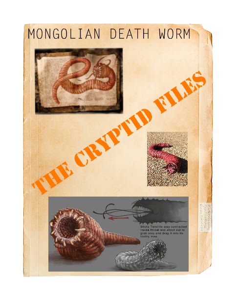 Cryptids Mongolian death worm... Img_0924