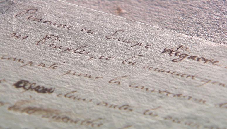 Marie-Antoinette, une victime ou une coupable idéale ? Tylych29
