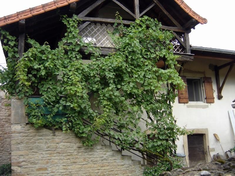 Petit patrimoine de la Chapelle sous Brancion  Collonge C22a_c10