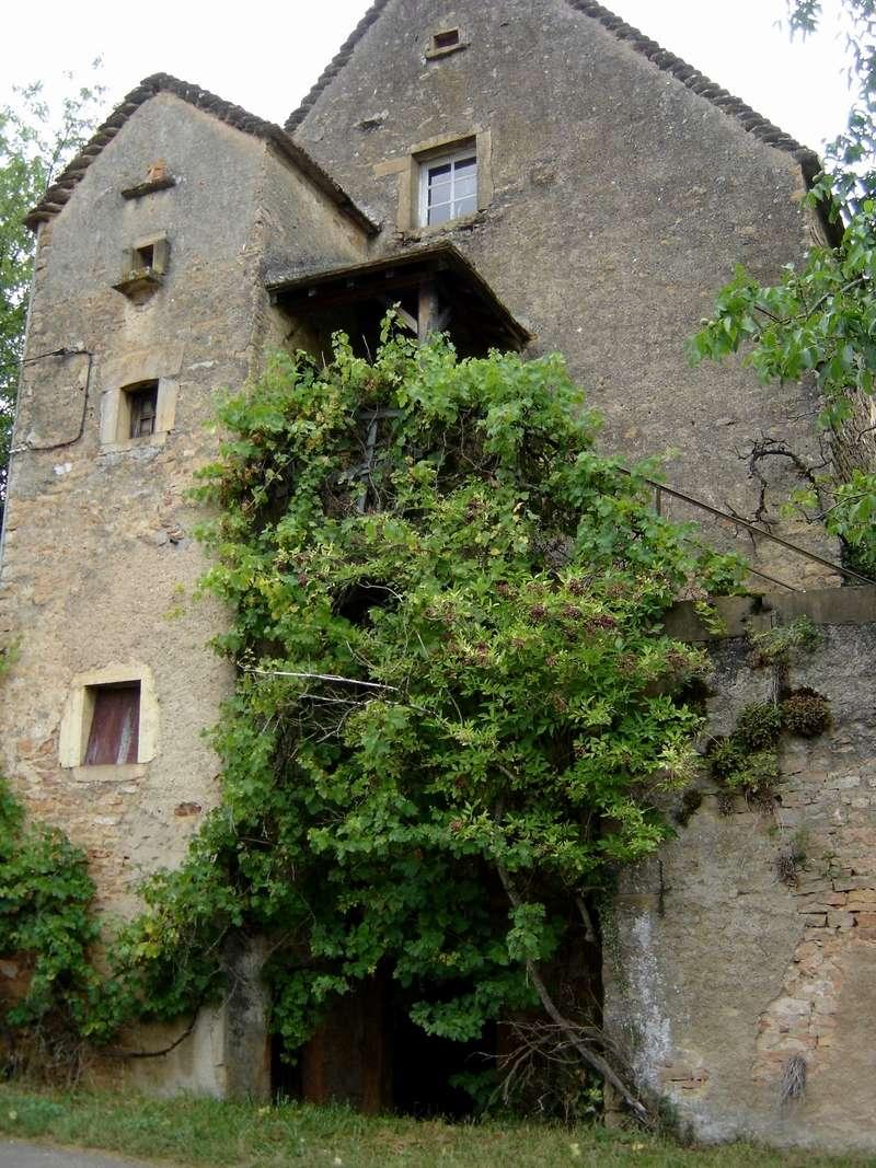 Petit patrimoine de la Chapelle sous Brancion  Collonge C37_co10