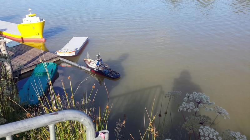 Marigny Miniflotte 50 20170839
