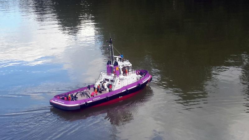 Marigny Miniflotte 50 20170852