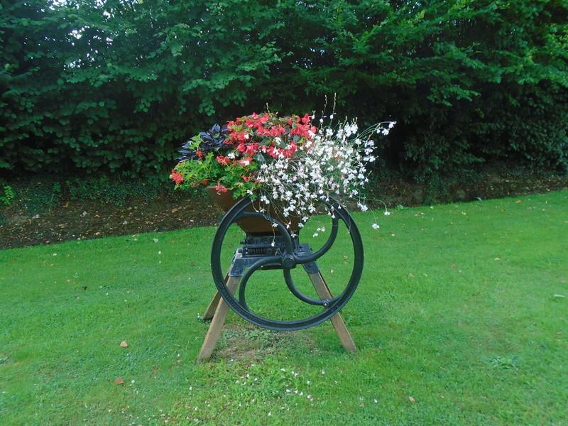 fleurs de fouqueville Fleurs15