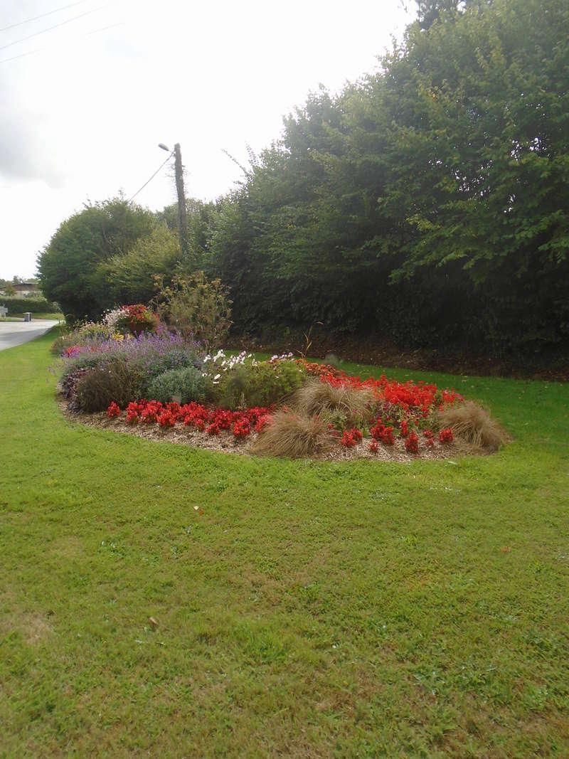 fleurs de fouqueville Fleurs17