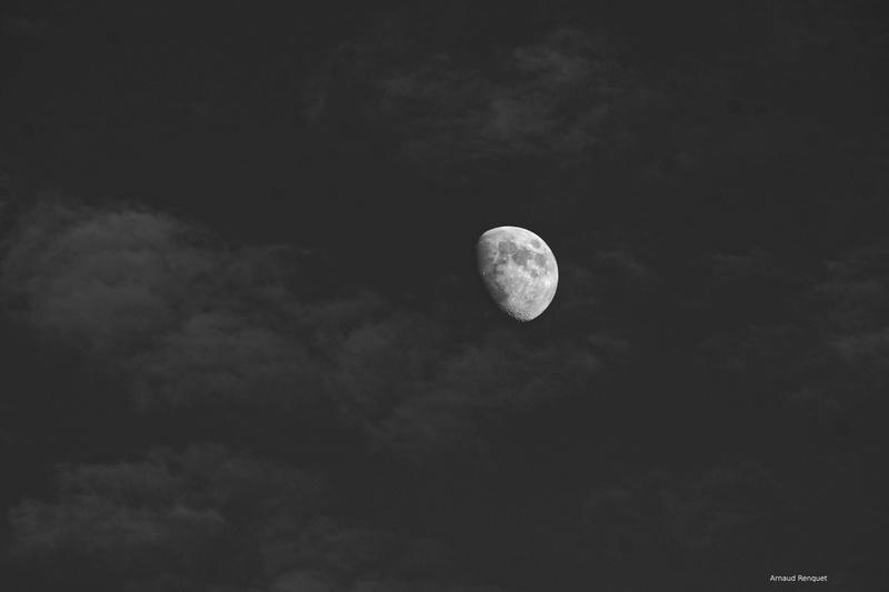 Lune du 3 juillet 2017 Dsc_0017