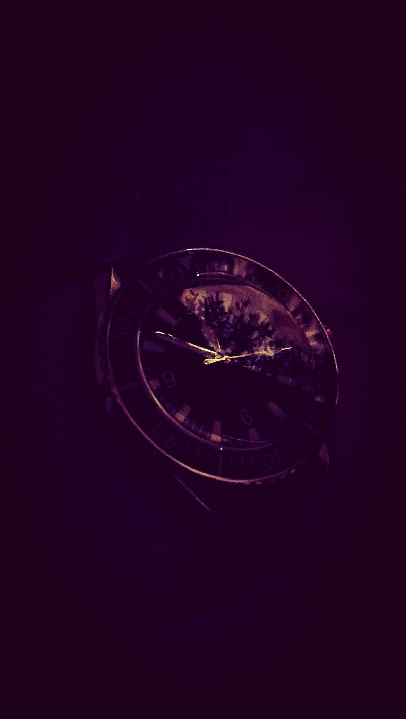 Votre montre du jour - Page 31 Img_2026