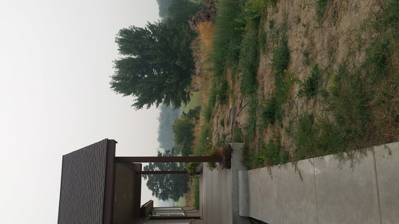 it's so smokey out there... 20170912